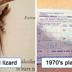 30 Surprising Things People Found In Second-Hand Books