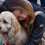 Losing A Dog Can Be As Hard As Losing A Loved One, Researchers Say