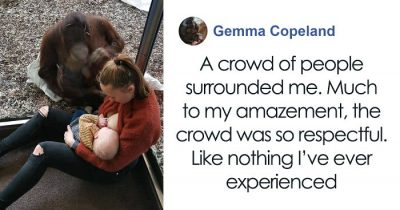 Breastfeeding Mom's Heart-Touching Encounter with Orangutan At The Oldest Zoo In The World Goes Viral
